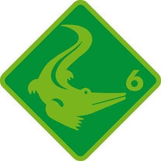 Bild von Kinderschwimmkurs Krokodil